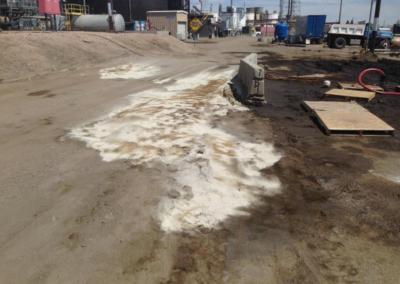 Soil Remediation During